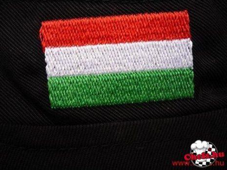 Magyar zászló hímzés